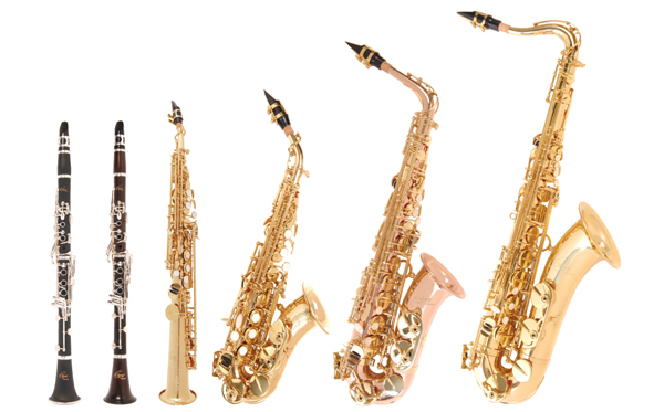 Woodwind Instruments List  Woodwind Family  DK Find Out